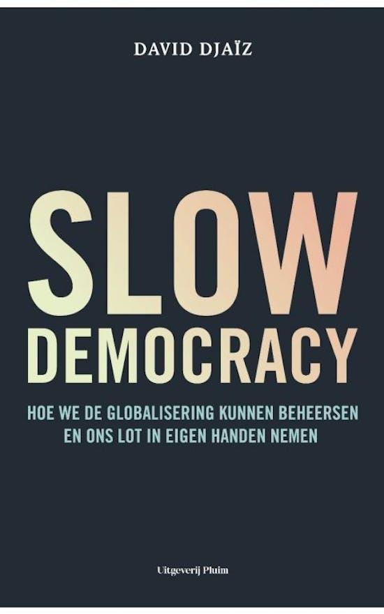 Slow democracy